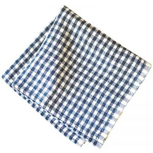 gingham_napkins_blue_1_1024x1024